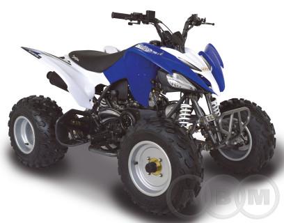 Квадроцикл ABM Scorpion 150