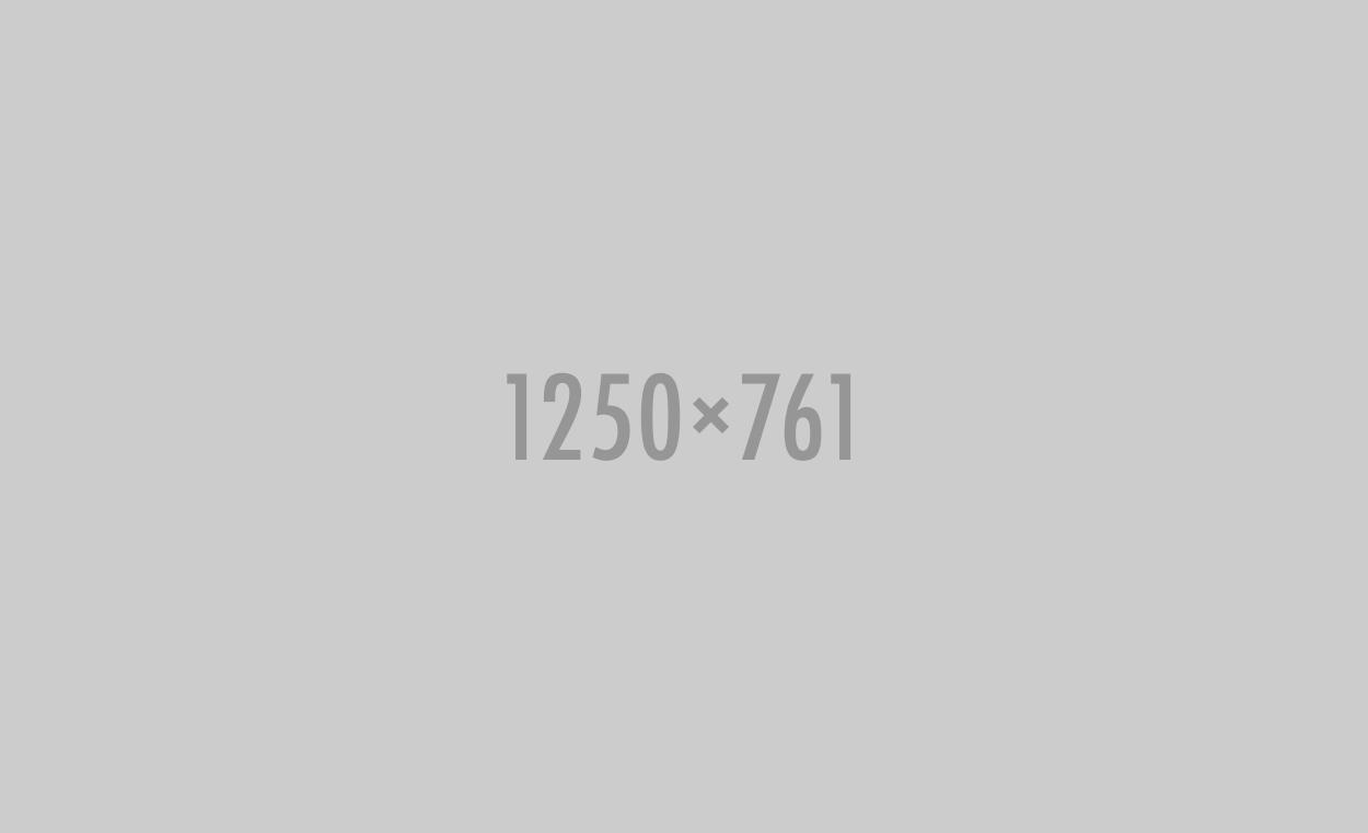 1250x761