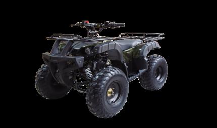 Квадроцикл Wels 150 THUNDER