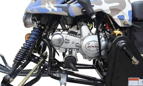 motorych_dingo_d_3-800x800