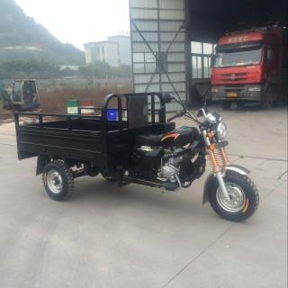 Трицикл Muravei WM250