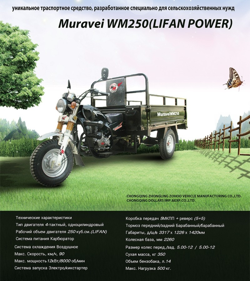 wm250-tricycle-1 (1)
