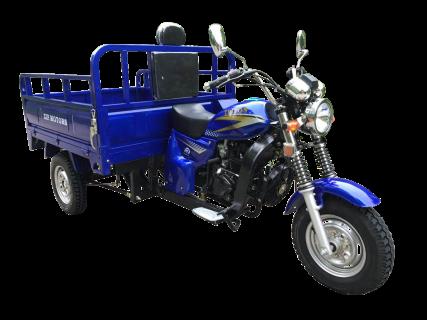 ТРИЦИКЛ ZIP MOTORS TRITON 200